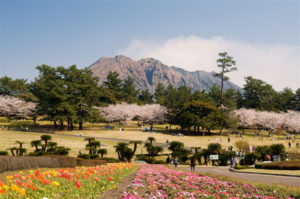yosinopark
